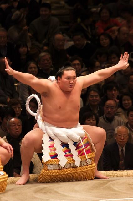 Sumo - Hakuho