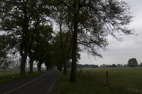 Alléer nær Plattenburg – dag 6