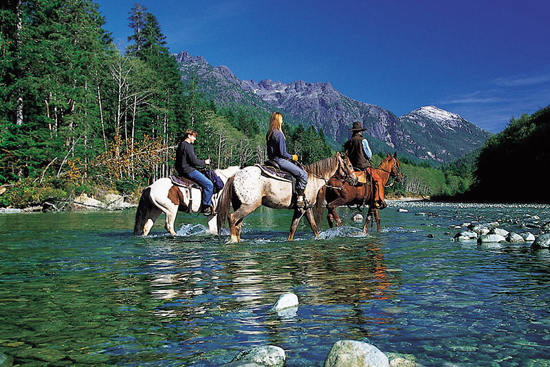 Horseback Riding On Vancouver Island And Gulf Islands Vancouver Island News Events Travel