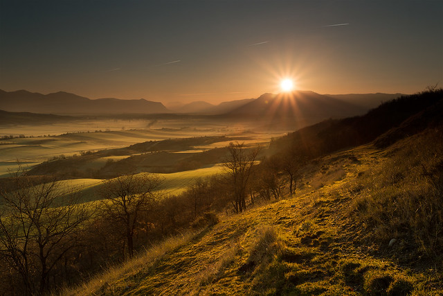sunrise, field, landscape