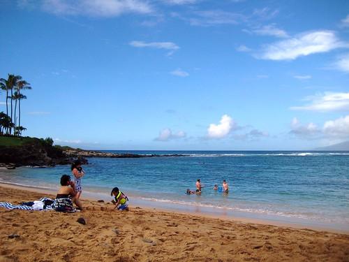 maui, hawaii, vacation, tropical, beach, sk… IMG_1688