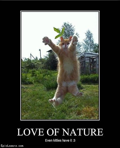 Love of Nature - LOLCats