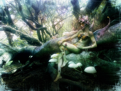 * Rainbow Forest Fairy *