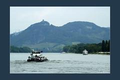 Mehr vom Rhein