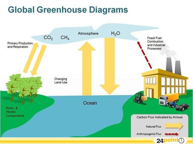 Global Greenhouse Diagram
