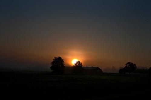 morning trees summer sky newyork field fog barn sunrise dawn farm foggy pinebush
