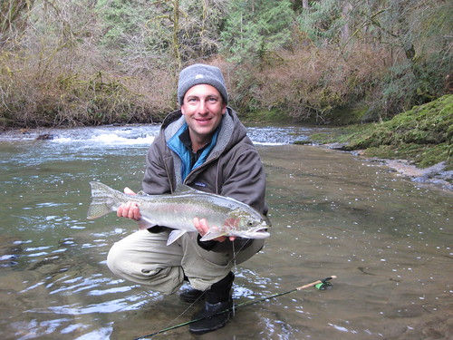 Icy cold weather but winter steelhead fishing heating up for Alsea river fishing report