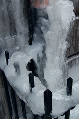 winter, white, melting, ice, icicle, freezing,