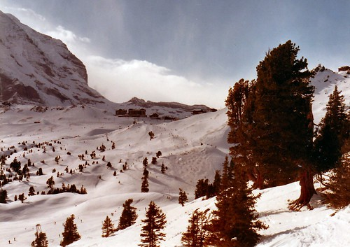 Ski Resort near Grindelwald Switzerland