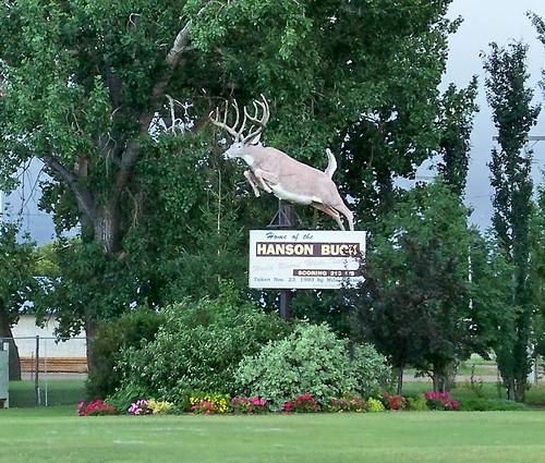 sk08h010 Biggar, Saskatchewan, Buck 2008