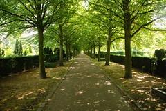 Holmens Kirkegard-Friedhof