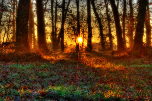 Mystical Sunrise - rev with Orton - First one explored: EXPLORE 22-feb-2009 ;-)