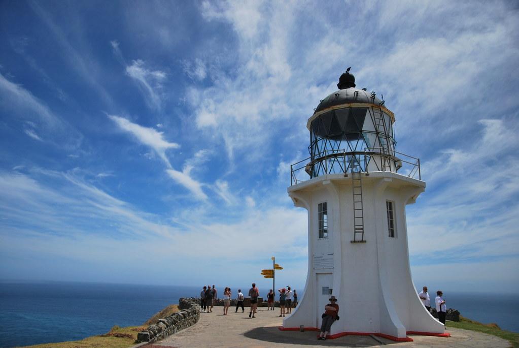 Ninety Mile Beach and Cape Reinga - Northland - New Zealand 045