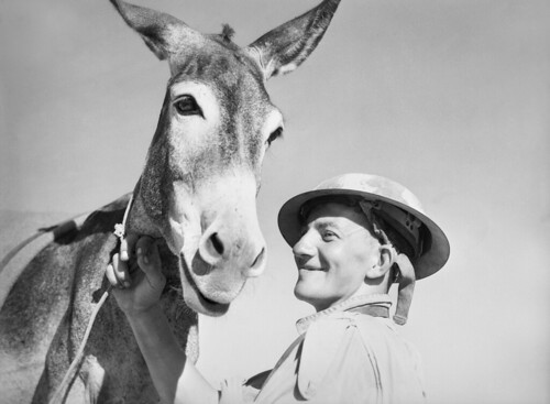 A man with donkey, 1941