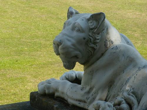 Lioness, West Wycombe House