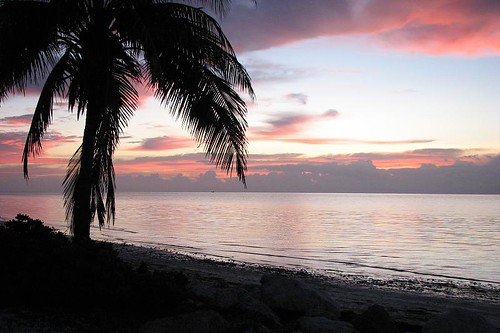 ocean sun beach clouds sunrise palm floridakeys