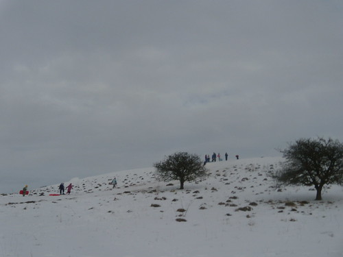 Sledges near Pitstone Hill