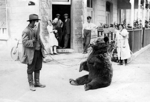 Berenleider / Animal trainer with performing bear