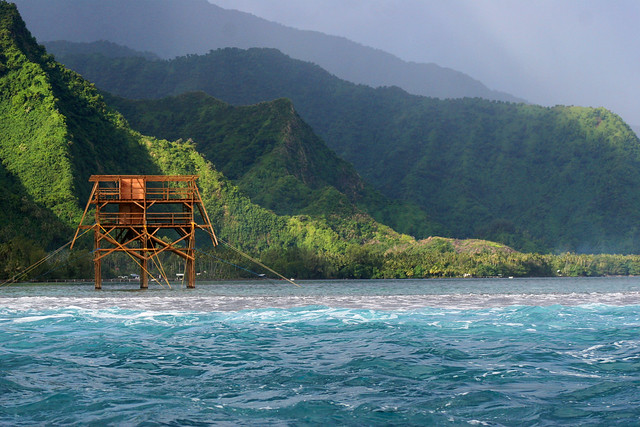 The judging tower (view from the surf) at Teahupoo, Tahiti.