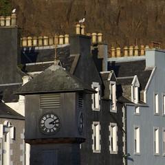 Tobermory Clock