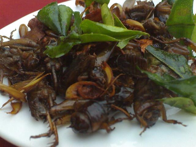 Stir-fried Crickets | Flickr - Photo Sharing!