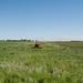 Franklin, Glenmore Township, La Moure County, North Dakota