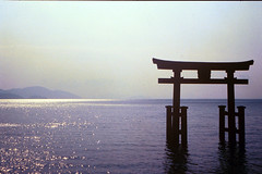 horizon, sea, ocean, evening, morning, torii, dusk, dawn, sunrise,