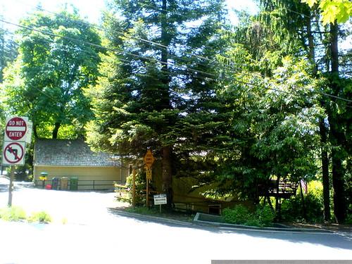 house for rent in lake oswego   DSC02917