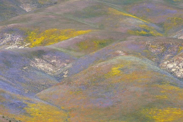 southern california hills_5983_1 web