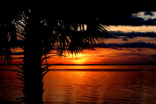 water sunrise palm pensacola