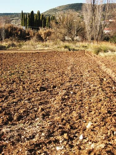 Algunas ideas b sicas sobre los suelos geobiombo for Significado de suelo
