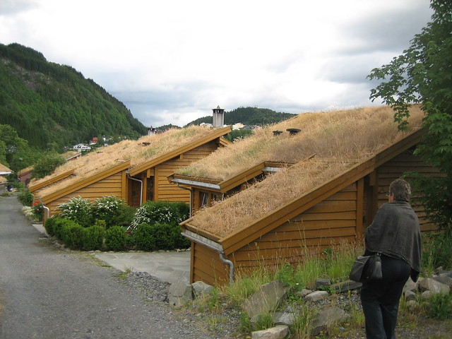 Torvetua eco-village