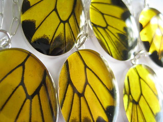 detail of real butterfly wing pendants