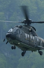black hawk(0.0), sikorsky s-70(0.0), mil mi-8(0.0), hal dhruv(0.0), sikorsky s-61(0.0), aircraft(1.0), aviation(1.0), helicopter rotor(1.0), helicopter(1.0), vehicle(1.0), military helicopter(1.0), air force(1.0),