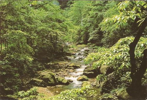 Wulingyan Scenic Area