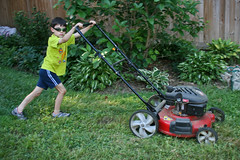 outdoor power equipment, edger, grass, tool, yard, mower, lawn mower, lawn,