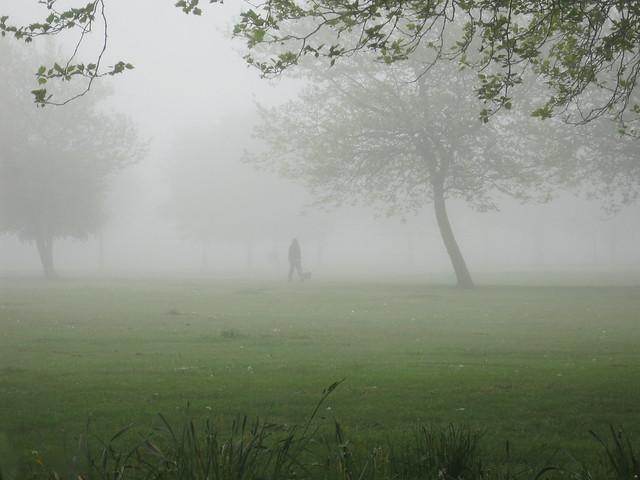 Project 365 #141: 210510 ¡Hay Niebla!