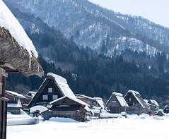 Shirakawago village and snowy mountain