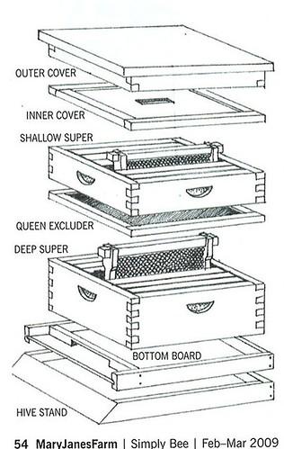 bees. Black Bedroom Furniture Sets. Home Design Ideas
