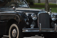 rolls-royce phantom vi(0.0), rolls-royce phantom v(0.0), bentley s2(0.0), bentley s1(0.0), rolls-royce silver cloud(0.0), mid-size car(0.0), bentley(0.0), automobile(1.0), vehicle(1.0), jaguar mark ix(1.0), jaguar mark 1(1.0), antique car(1.0), classic car(1.0), vintage car(1.0), land vehicle(1.0), luxury vehicle(1.0),