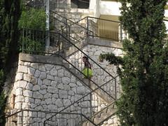156 steps