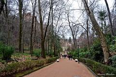 Paseando por Granada y La Alhambra
