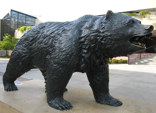 bruin, UCLA, kickass bear IMG_7617