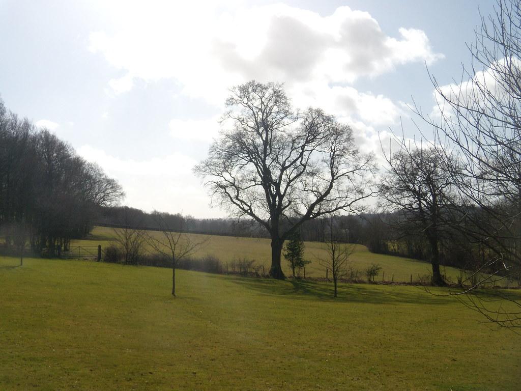 View Wadhurst Circular