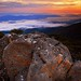 Mt Wellington Sunrise