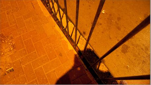 shadow me self israel palestine 2010