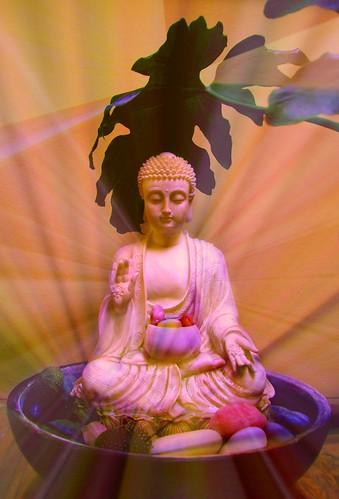 Buddha statue abhaya mudra by Wonderlane