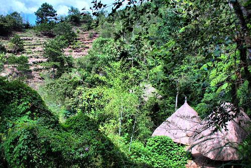 Huts in Tam-Avan Village