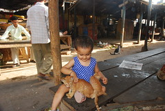 Marziya and The Cats by firoze shakir photographerno1