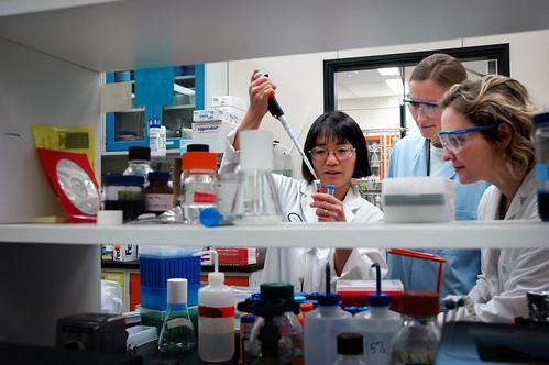 laboratory researchers